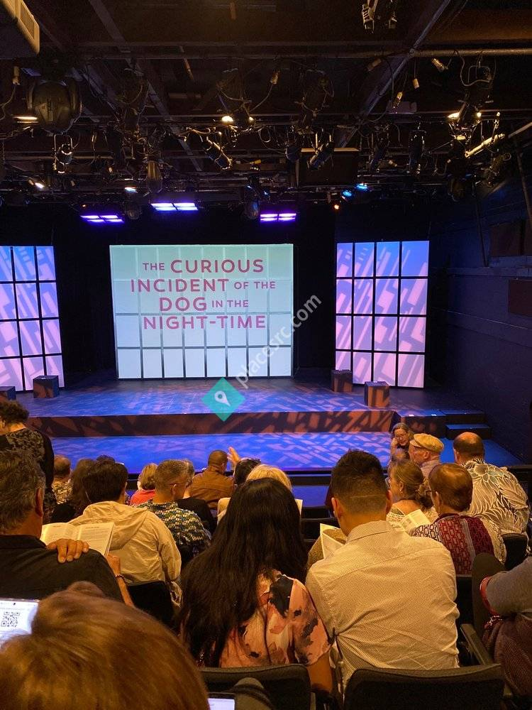 Yelp Night At MVT: Curious Incident of the Dog in the Night-Time